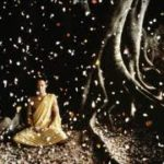 Refugiul Buddhist de la Suan Mokkh, episodul 6