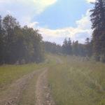 Predeal – Cioplea – Susai – Clăbucet – plimbare montano-urbană