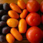 Mâncare crudă sau gătită la foc? – câteva argumente –