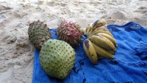 ananassoursoup