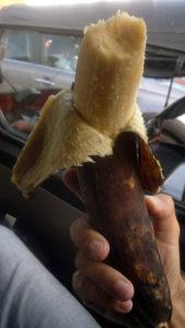 bananamarte