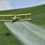 Obiecții împotriva fructelor – 4 – sunt pline de pesticide