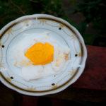 Canistel/Egg Fruit și cum să faci ouă ochiuri raw vegane