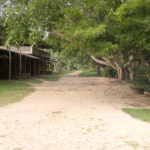 Refugiul Buddhist de la Suan Mokkh, episodul 5