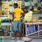 Mutare Temporară în Sri Lanka - toate detaliile